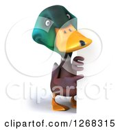 Clipart Of A 3d Mallard Drake Duck Pointing Around A Sign Royalty Free Illustration