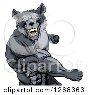 Clipart Of A Tough Vicious Muscular Wolf Man Punching Royalty Free Vector Illustration