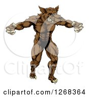 Clipart Of A Muscular Brown Wolf Man Attacking Royalty Free Vector Illustration