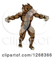 Clipart Of A Muscular Aggressive Clawed Boar Man Mascot Attacking Royalty Free Vector Illustration