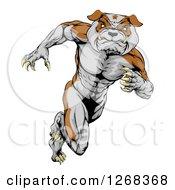 Clipart Of A Muscular Tough Bulldog Man Mascot Running Upright Royalty Free Vector Illustration