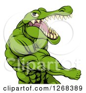 Mad Muscular Crocodile Or Alligator Man Punching