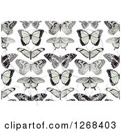 Seamless Background Pattern Of Black And Green Butterflies On White