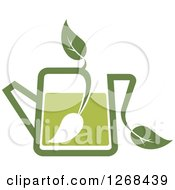 Poster, Art Print Of Pot Of Green Tea With A Leaf 2