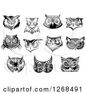 Clipart Of Black And White Owl Faces Royalty Free Vector Illustration