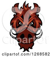 Clipart Of A Vicious Razorback Boar Mascot Head Royalty Free Vector Illustration