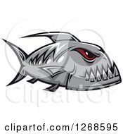 Clipart Of A Red Eyed Gray Piranha Fish Royalty Free Vector Illustration