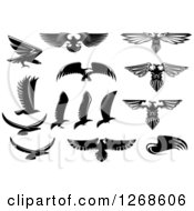 Clipart Of Black And White Eagle Designs Royalty Free Vector Illustration