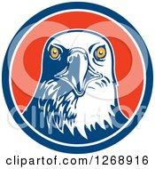 Clipart Of A Retro Bald Eagle Head In A Blue White And Red Circle Royalty Free Vector Illustration