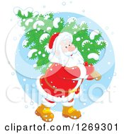 Clipart Of A Happy White Santa Claus Carrying A Fresh Cut Christmas Tree In The Snow Over A Blue Circle Royalty Free Vector Illustration
