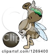 Clipart Of A Cartoon Green Eyed Posing House Fly And Pebble Royalty Free Vector Illustration