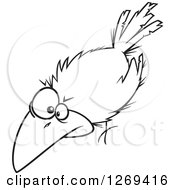 Clipart Of A Black And White Cartoon Spooky Halloween Crow Royalty Free Vector Line Art Illustration by toonaday