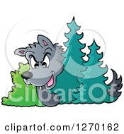 Clipart Of A Sneaky Little Red Riding Hood Looking Around Trees Royalty Free Vector Illustration by visekart