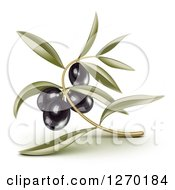 Clipart Of 3d Black Olives And Leaves Royalty Free Vector Illustration