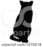 Black Silhouette Of A Sitting Cat Facing Front