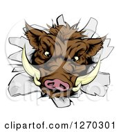 Clipart Of A Fierce Brown Boar Head Breaking Through A Wall Royalty Free Vector Illustration