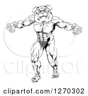 Clipart Of A Black And White Angry Muscular Bulldog Man Mascot Standing Upright Royalty Free Vector Illustration
