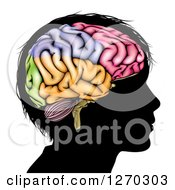 Clipart Of A Silhouetted Boys Head With A Colorful Brain Royalty Free Vector Illustration