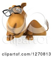 Clipart Of A 3d Bespectacled Camel Looking Down Over A Sign Royalty Free Illustration