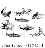 Clipart Of Black And White Tribal And Flaming Sharks Royalty Free Vector Illustration