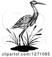 Clipart Of A Black And White Wading Tribal Crane Bird With Cattails Royalty Free Vector Illustration