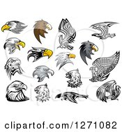 Clipart Of Eagle Heads Royalty Free Vector Illustration