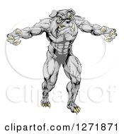 Clipart Of A Muscular Gray Bulldog Monster Man Mascot Standing Upright Royalty Free Vector Illustration