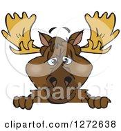 Moose Peeking Over A Sign