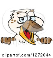 Clipart Of A Happy Kookaburra Bird Peeking Over A Sign Royalty Free Vector Illustration by Dennis Holmes Designs