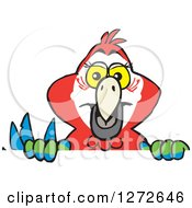 Clipart Of A Happy Scarlet Macaw Parrot Peeking Over A Sign Royalty Free Vector Illustration by Dennis Holmes Designs