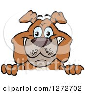 Clipart Of A Happy Brown Bulldog Peeking Over A Sign Royalty Free Vector Illustration by Dennis Holmes Designs