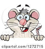 Clipart Of A Happy Mouse Peeking Over A Sign Royalty Free Vector Illustration