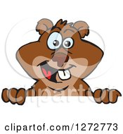Clipart Of A Happy Beaver Peeking Over A Sign Royalty Free Vector Illustration by Dennis Holmes Designs