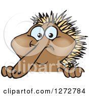 Clipart Of A Happy Echidna Peeking Over A Sign Royalty Free Vector Illustration