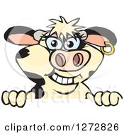 Clipart Of A Happy Holstein Cow Peeking Over A Sign Royalty Free Vector Illustration