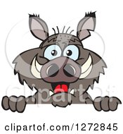 Clipart Of A Happy Boar Peeking Over A Sign Royalty Free Vector Illustration by Dennis Holmes Designs