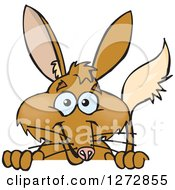 Clipart Of A Happy Bilby Peeking Over A Sign Royalty Free Vector Illustration