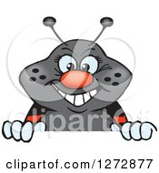 Clipart Of A Happy Ladybug Peeking Over A Sign Royalty Free Vector Illustration by Dennis Holmes Designs