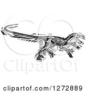 Clipart Of A Black And White Woodcut Velociraptor Skeleton Royalty Free Vector Illustration