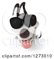 Clipart Of A 3d Jack Russell Terrier Dog Wearing Sunglasses And Looking Down At A Sign Royalty Free Illustration