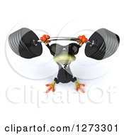 Clipart Of A 3d Green Springer Business Frog Wearing Sunglasses Looking Up And Lifting Up A Barbell Royalty Free Illustration by Julos