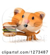Clipart Of A 3d Ginger Cat Holding A Double Cheeseburger Royalty Free Illustration
