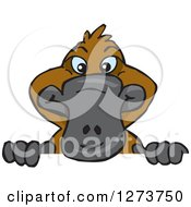 Clipart Of A Happy Platypus Peeking Over A Sign Royalty Free Vector Illustration by Dennis Holmes Designs