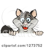 Clipart Of A Happy Possum Peeking Over A Sign Royalty Free Vector Illustration