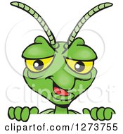 Clipart Of A Happy Praying Mantis Peeking Over A Sign Royalty Free Vector Illustration