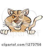 Clipart Of A Puma Peeking Over A Sign Royalty Free Vector Illustration