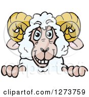 Clipart Of A Happy Ram Sheep Peeking Over A Sign Royalty Free Vector Illustration