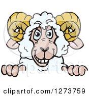 Happy Ram Sheep Peeking Over A Sign
