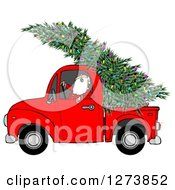 Clipart Of Santa Driving A Fresh Cut Christmas Tree With Lights In A Red Pickup Truck Royalty Free Illustration by djart