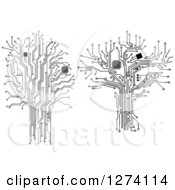 Clipart Of Grayscale Computer Chip And Circuit Trees Royalty Free Vector Illustration